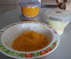 purée potimarron poulet pour bébé 6 mois